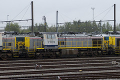 20121006 020 Antwerpen Noord. 7709 'BRAVO' (15038) Tags: bravo belgium diesel trains locomotive antwerp railways nmbs sncb 7709 class77 antwerpennoord reeks77 srie77