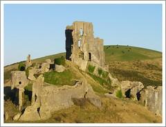 Corfe Castle (Tilney Gardner) Tags: castle landscape sheep dorset corfecastle purbecks