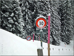 Traffic disruption ... (ruschi_e) Tags: schnee snow forest schweiz switzerland wald trafficsigns verkehrsschilder hasliberg kunstundnatur ruschie