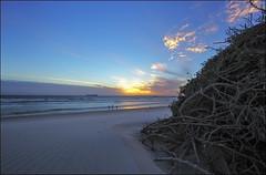 Dolphin Beach - Cape Town (smee.bruce) Tags: sunset beach sand sundown wind capetown brush 14mm dolphinbeach canoneos6d