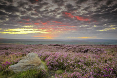 Glaisdale Moor (Phil Hunter (VividVista)) Tags: cloud canon nationalpark twilight dusk heather yorkshire ngc npc northyorkmoors glaisdalemoor 5dmkii vividvista