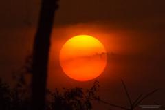 Sunset (Saurav Pandey) Tags: eve sunset sun india evening twilight warm sundown dusk bangalore karnataka nightfall koramangala eventide evenfall
