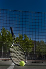 DSC_2814A - Tennis Raquet and Ball (PryanksterDave (Dave Price)) Tags: ball naturallight tennis week10 racquet 2013 project52 lightingessentials