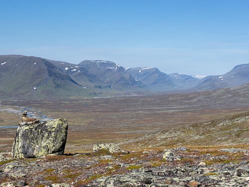 Lappland-092015-15