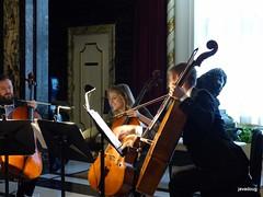 Cello trio PSO Classical Mixer (javadoug) Tags: pso pittsburgh cello trio classical symphony mixer nature javadoug