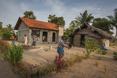 Proud of their new home 6847 (shahidul001) Tags: people man male men males woman female srilankans home house courtyard garden plants flower flowers water watering rural village life dailylife horizontal color colour srilanka southasia asia drik drikimages