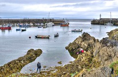 Hunting for crabs at Mevagissey, Cornwall (Baz Richardson) Tags: cornwall mevagissey cornishharbours rocks rockpools harbours fishingboats