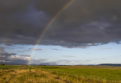 Le pays des arcs en ciel (the rainbows country) (Larch) Tags: sky scenery landscape field country campagne cloud arcenciel rainbow vert green gris grey islande iceland route road