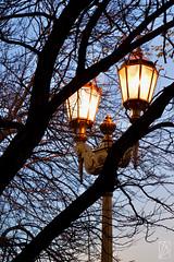 Golden lights (marileiva) Tags: city lights lamp outdoor farol night evening sunset anochecer golden gold argentina buenosaires
