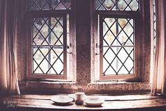 Leaded Window At Cotehele House NT (Peter Greenway) Tags: nt coteshele ntproperty windowsill cotehele nationaltrust leadedwindow cotehelehouse saltash cornwall england