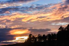 IMG_1525-1 (Andre56154) Tags: schweden sweden sverige wolke cloud himmel sky wasser water see lake ufer sonnenuntergang sunset abend evening dmmerung afterglow baum tree wald forest