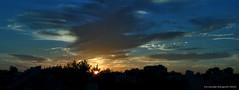 tarde que se va (ojoadicto) Tags: sunset atardecer bluesky yellow dorado sun sol ciudad city contraluz buenosaires artisticphotography