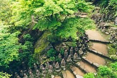 The Steps (Pikaglace) Tags: sony a7 miyajima japan japon steps temple shinto religion religious pierre marches rables feuilles vertes vintage feel