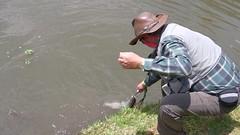 Reporte Pesca Las Cascada16