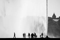DSC_2241.jpg (david roessli) Tags: silhouette people jetdeau genve switzerland ch