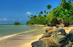 Puerto Rican beach