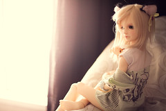 Gatito! (mymuffin_15) Tags: school canon eos rebel 50mm doll bjd volks t1i