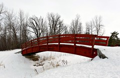 Red (Cindy's Here) Tags: bridge winter red snow canada canon winnipeg manitoba kingspark