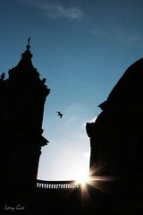 In the shadow (.lory.) Tags: city blue italy sun sunlight rome roma architecture shadows blu basilica ombra ombre cielo sole azzurro lazio cattedrale