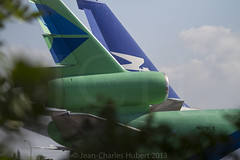 OPF_2013_03-3.jpg (LASCAR35) Tags: aviation scrapyard dc10 opf opalocka b747200