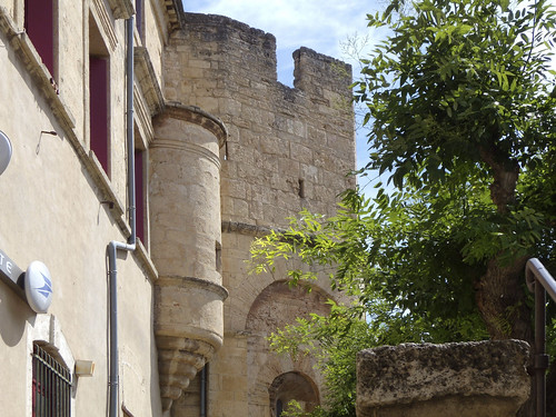 Loupian (Hérault)  (19)