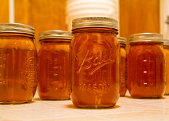 Apple Wine (Tim Fitzwater) Tags: mason bottling applewine masonjars ballmasonjars bottlingapplewine