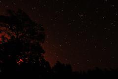 Make a wish upon a star (Mariiiie4) Tags: sky night way stars sweden nightsky milky Astrometrydotnet:status=solved Astrometrydotnet:version=14400 Astrometrydotnet:id=alpha20130466288440
