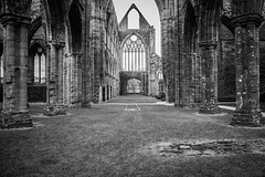 "Tintern Abbey • <a style=""font-size:0.8em;"" href=""http://www.flickr.com/photos/32236014@N07/8636388428/"" target=""_blank"">View on Flickr</a>"
