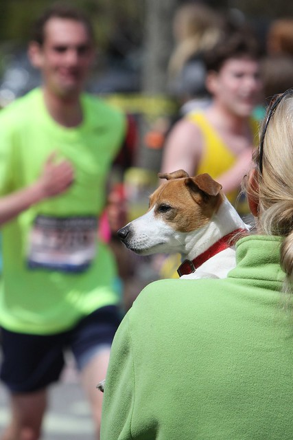 Boston Marathon - April 15, 2013 672