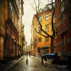 .. walk in the rain .. (Kerstin Frank art) Tags: street texture dogs rain umbrella square flag oldtown photomix distressedjewell lesbrumes kerstinfrankart kerstinfranktexture creativephotocafe