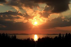 Auringonlasku Lappeenrannan Rauhassa 20.8.2016 (kimblenaattori) Tags: finland lake jrvi auringonlasku yashica ml 50mm f19