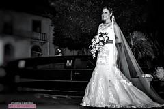 Wedding in Panama (mestremur) Tags: casamientoenpanama artefotografico panama fotosdebodaspanama bodas fotosdebodas wedding alphacameras sonycamera sonylens zeisslens sonya7rii