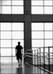 F_DSC6851-BW-Nikon D800E-Nikkor 28-300mm-May Lee  (May-margy) Tags: maymargy bw                  humaningeometry streetviewphotographytaiwan mylensandmyimagination naturalcoincidencethrumylens blur bokeh taiwan repofchina  fdsc6851bw portrait viewfromback rail window glass cross linesformandlightandshadows newtaipeicity nikond800e nikkor28300mm maylee