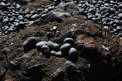 Rocks (laurelpattee) Tags: rock rocks stone stones cobble beach shore yaquina newport