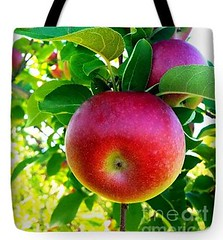 RedAppleTote (CheerfulWhimsy) Tags: tote shopping bag apple red orchard maine