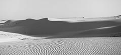 White Dunes (ZhoPhos) Tags: 2016 february iii m3 rx100 sony travel vietnam sand dunes white blackandwhite bw monotone panorama panoramic nature landscape asia
