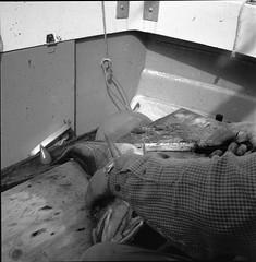 DY011 (Bjrn Egil Johansen) Tags: rolleiflex mxevs tessar35 kodak tmax400 torsk cod fishing matauk slye rodinal1100semistand