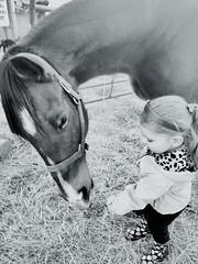 (EquineLope93) Tags: blackandwhite littlegirl horse