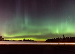 The Northern Lights (Adriana Faciu) Tags: dark stargazing night solarwind coronalmassejection phenomenon sky green lights bright aurora northernlights