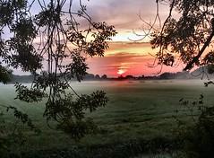 ochtendgloren (Gerard Stolk (vers l'Angleterre)) Tags: kleindelfgauw ochtendgloren zon nevel weilanden