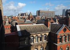 Roofs of North Campus (.annajane) Tags: liverpool uk england merseyside university universityofliverpool uol campus royal hospital brodietower roof architecture royalliverpooluniversityhospital