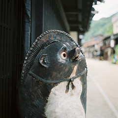 R1-50 -  (redefined0307) Tags:      zenzabronicas2 zenzabronica mediumformat fujifilmpro400h nagano narai japan rural