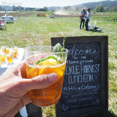 Homegrown Refreshment (gapey) Tags: hgxoxbow homegrown oxbowfarm farm tour lunch seattle pickle beets carrots