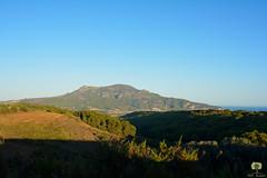 Le mont Chenoua (Ath Salem) Tags: algrie algeria coast cte mditerrane mediterranean      tipaza cherchell gouraya sidi brahim braham crique littoral aqueduc    chenoua  sea algerian beach amazing