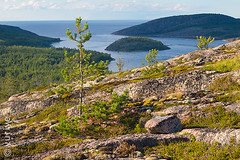 Archipelago (yuriye) Tags: yuriye archipelago whitesea sea island summer evening stone rocks hill clif blue landscape horisont nature pine karelia kuzova kem         outdoor   lapland   north