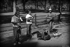 Central Park Band (Avrin Ross) Tags: new york city newyorkcity bw music white newyork black musicians photography blackwhite nikon awesome great group 2012 dlsr d3100