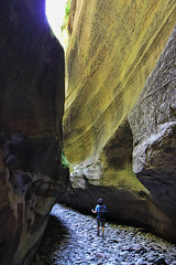 Boowinda Gorge, Carnarvon National Park (Fear_Through_The_Eyes) Tags:
