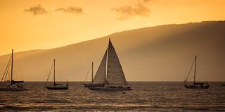 sailboats off of Lahaina