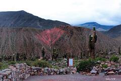Un jardn en lo alto (Gaby Fil ) Tags: argentina inca camino noa jujuy quebradadehumahuaca sudamrica norteargentino patrimoniodelahumanidad ph044 chapaqam