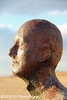 The only bronzed face on the beach (mspbusy) Tags: bronze sunbathe anotherplace gormleystatue